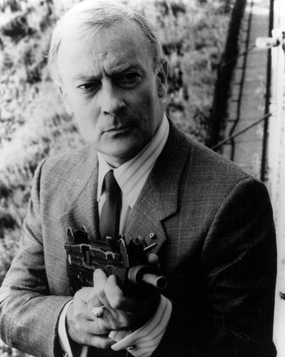 This is an image of Prints & Posters of Edward Woodward 107270