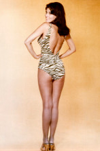 Raquel Welch great butt pose in swimsuit full length 8x12 inch real photo