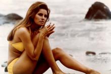 Raquel Welch in yellow bikini circa 1966 sitting on beach 8x12 inch real photo