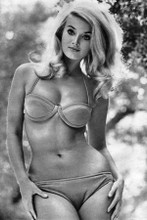 Barbara Bouchet sexy pin-up in bikini 8x12 inch real photograph