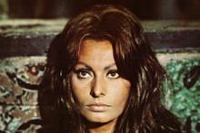 Sophia Loren circa 1960's beautiful pose 8x12 inch real photograph