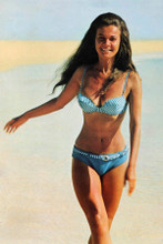 Imogen Hassal busty pin-up 1970 wearing bikini on beach 8x12 inch photo