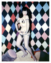 Bettie Page sexy in bra top & stockings full length pose colorful 5x7 inch photo