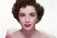 Elizabeth Taylor beautiful 1950's Hollywood studio portrait in pink 5x7 photo