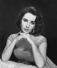 Elizabeth Taylor beautiful 1950's studio portrait 5x7 photo