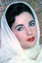 Elizabeth Taylor beautiful 1950's studio portrait with white scarf 5x7 photo