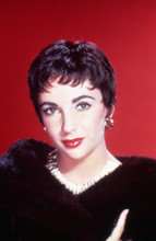 Elizabeth Taylor beautiful studio portrait with red background 5x7 photo