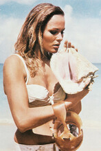 Ursula Andress 4x6 inch real photo #31466