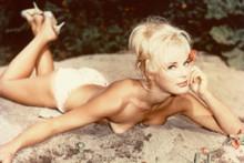 Elke Sommer vintage 4x6 inch real photo #319881