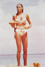 Ursula Andress 4x6 inch real photo #330708