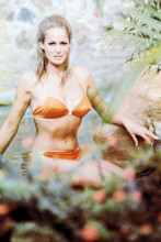 Ursula Andress 4x6 inch real photo #331627