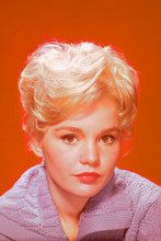 Tuesday Weld 4x6 inch real photo #347138