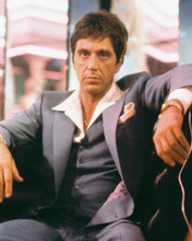 Al Pacino vintage 4x6 inch real photo #354844