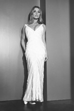Sharon Tate vintage 4x6 inch real photo #448795