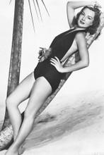 Deborah Kerr vintage 4x6 inch real photo #448880