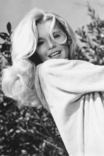 Tuesday Weld 4x6 inch real photo #449311