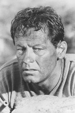 William Holden 4x6 inch real photo #455942