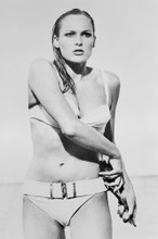 Ursula Andress 4x6 inch real photo #462748