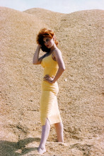 Tina Louise, Amazing quality sexy glamour pose 4x6 photo