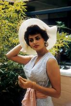 Sophia Loren, 1950's pose in white hat 4x6 photo