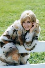 Sue Lyon, 1960's pose in fur coat 4x6 photo