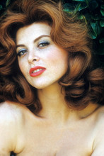 Tina Louise, beautiful glamour pose 4x6 photo
