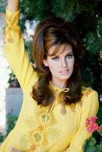 Raquel Welch, stunning 1960's portrait in yellow dress 4x6 photo