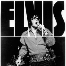 Elvis Presley cool pose 1970 in concert wearing shades 12x12 photo