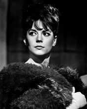 Gypsy Natalie Wood beautiful portrait with fur around shoulders 12x18  Poster