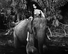 Tarzana Franca Polesello topless riding elephant 12x18  Poster