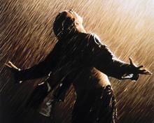 The Shawshank Redemption Tim Robbins movie poster art 12x18  Poster