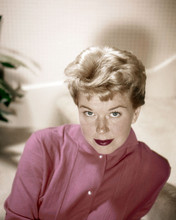 Doris Day studio portrait in pink blouse circa 1955 12x18  Poster
