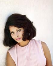 Sophia Loren beautiful 1960's glamour pose in pink dress 12x18  Poster