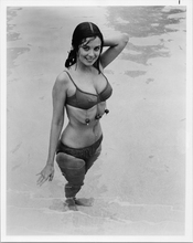 Phyllis Davis sexy pose in bikini in pool 1970's 8x10 photo