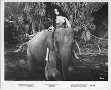 Tarzana original 1970 8x10 photo Franca Polesello rides elephant