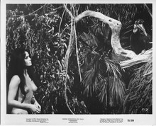 Tarzana original 1970 8x10 photo Franca Polesello in jungle looking at bird