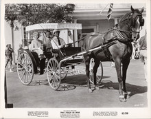 That Touch of Mink original8x10 photo 1962 Doris Day Cary Grant in buggy