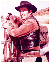 James Drury vintage 1970's 8x10 color photo as The Virginian with his horse