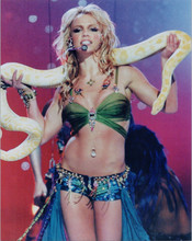Britney Spears on stage in concert 8x10 photo holding python snake
