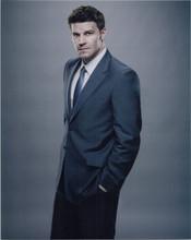 David Boreanaz studio portrait in suit Bones TV series 8x10 photo