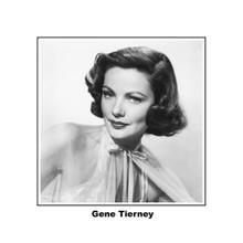 Gene Tierney stunning studio glamour portrait 8x10 photo