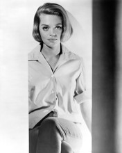 Dyan Cannon rare young studio pose mid 1960's 8x10 photo