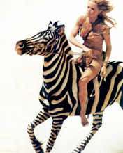 Tanya Roberts as Sheena Queen of the Jungle riding wild zebra 8x10 photo