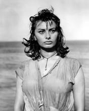 Sophia Loren sensual pose in wet dress Boy On A Dolphin movie 1957 8x10 photo