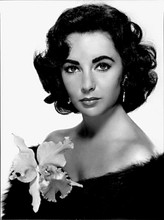 Elizabeth Taylor beautiful studio portrait bare shoulders in black 8x10 photo