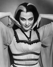 The Munsters 1964 Tv series Lily Munster poses for format portrait 8x10 photo