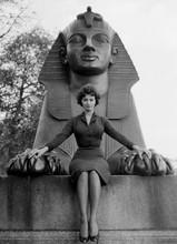 Sophia Loren sits by statue of Egyptian Queen Nefertiti 8x10 photo