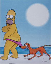 The Simpsons TV series Homer Simpson on beach as dog pulls his shorts 8x10 photo