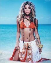 Shakira wears bikini and Hawaiian style dress by ocean 8x10 photo