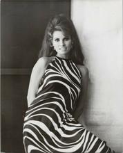 Raquel Welch gorgeous pose in zebra striped dress smiling 1968 8x10 photo